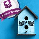 Socially Devoted Q2: Twitter Users Flock to Socially Devoted Brands image