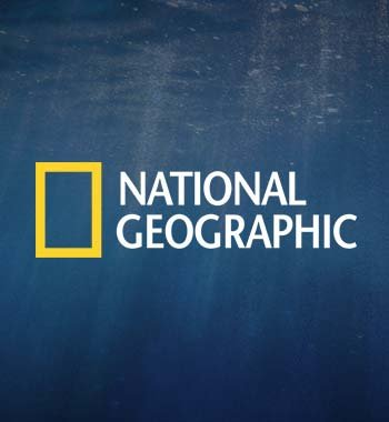 National Geographic's Social Media Success in 2014 image