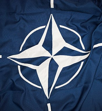 Lessons from NATO for Leading the Way in Digital Communication image