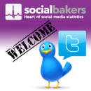 Socialbakers launches Twitter profile statistics image